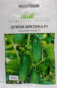 Огірок Арктика F1 10н (Проф насіння)