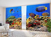 """Фото Шторы в зал """"Экзотические рыбки"""" 2,7м*4,0м (2 половинки по 2,0м), тесьма"""