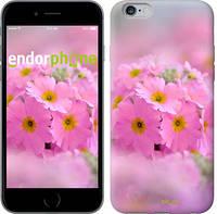 "Чехол на iPhone 6s Plus Розовая примула ""508c-91-4848"""