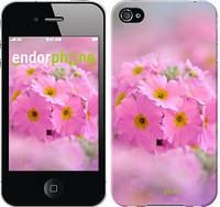 "Чехол на iPhone 4s Розовая примула ""508c-12-4848"""