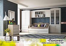 Набор мебели для детской Полонез №2 (БМФ)