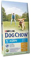 Корм для щенков Purina Dog Chow Junior Chicken & Rice