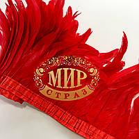 Тесьма перьевая из перьев петуха, цвет Red, высота 20-25 см,  цена за 0.5м,