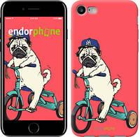 """Чехол на iPhone 8 Мопс на велосипеде """"3072c-1031-4848"""""""
