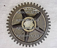 Шестерня КПП А25.37.260 (Т-25, Д-21) ведомая , фото 1