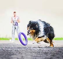 Тренировочный снаряд для собак Пуллер Миди, фото 2