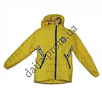 Демисезонная куртка для девочек  B33-1 (5-10 лет) оптом в Одессе.