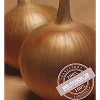 Takii Seeds Бонус F1 (Bonus F1) семена лука репчатого Takii Seeds, оригинальная упаковка (250000)
