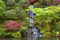 Водопад, озерцо