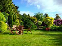 Столик, стулья, природа