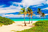 Пальмы на море
