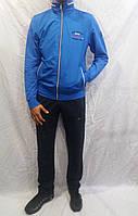 Супер цвет спортивный костюм PAULS SHARK