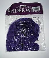 Павутина з павуками фіолет