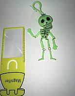 Скелет що тріщить світлонакоп.