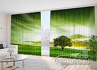 """Фото Шторы в зал """"Зеленое дерево"""" 2,7м*2,9м (2 полотна по 1,45м), тесьма, фото 1"""