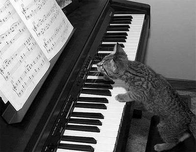 Ноти для фортепіано