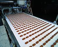 Лента транспортерная пищевая для кондитерской промышленности