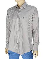 Рубашка мужская хлопковая Negredo 0295 H Сlassic