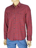 Мужская хлопковая рубашка в клетку Desibel 047 C-26 H