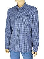 Рубашка мужская Desibel 047 C-27 H