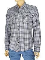 Мужская хлопковая рубашка  Desibel 047 C-03 H