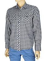 Мужская хлопковая рубашка Desibel 047 C-24 H