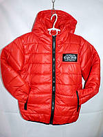 Детская демисезонная куртка на синтепоне (116-140) — купить по низкой цене оптом со склада в одессе 7км