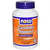 Кандида Суппорт, Now Foods, Candida Support, 90 капсул