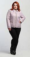 Куртка на синтепоне цвета лаванды