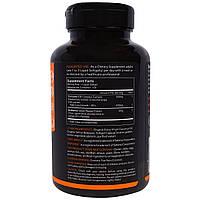 Куркумин C3, Turmeric Curcumin, Sports Research, 500 мг, 120 капсул