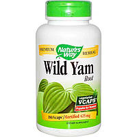 Дикий ямс, Wild Yam, Nature's Way, 425 мг, 180 капсул