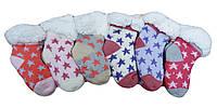 Детские носки для девочек оптом, Mr Pamut ,0/12-24 рр., арт MP7101