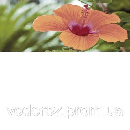e6f416144 Декор Cerrol IMPERIA FLORA CENTRO 20x50 508599, цена 383 грн ...