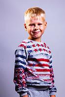 Батник с начесом для мальчика Америка