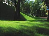 Теневой газон( Садово-парковый газон)  5 кг