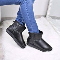 Угги женские UGG черные короткие кожаные 3605