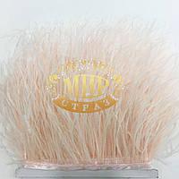 Тесьма страусиная, цвет Lotus, цена за 0,5м