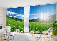 """Фото Шторы в зал """"Ромашковое поле"""" 2,7м*5,0м (2 полотна по 2,5м), тесьма"""
