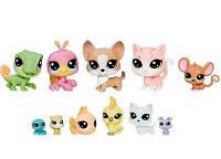 Набор зверюшек-малышей House pets, Littlest Pet Shop, Hasbro