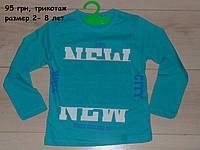 """Реглан для мальчика """"Нью-йорк"""" цвет бирюза, размеры 2-8 лет"""