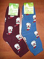 Махровые женские носки Топ-тап. Дед мороз. Р. 23- 25. Житомир