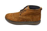 Ботинки мужские замшевые демисезонные на байке Multi-Shoes Master Ginger