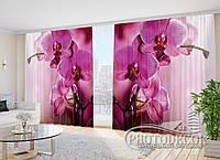 """3D Фото Шторы в зал """"Пурпурная орхидея 2"""" 2,7м*2,9м (2 полотна по 1,45м), тесьма"""