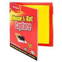 """Мышеловка липкая красная """"Mouse&Rat Capture"""" 16х21 см."""