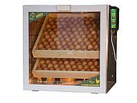 Инкубатор Тандем ламповый на 200 куриных яиц.