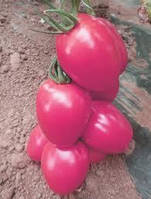 Семена томатов Эльдорада Розовая 1 кг , Польша