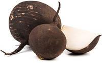 Семена редьки черная 1 кг.Украина