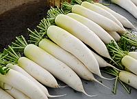 Семена редьки дайкон миновайзе  1 кг .Польша