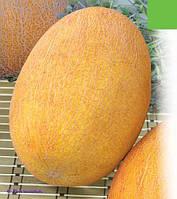 Семена дыни Берегиня 1 кг , Польша
