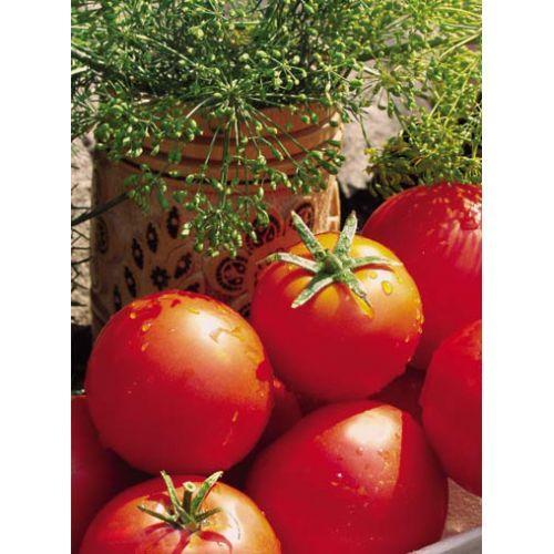 Семена томатов Баллада 1 кг , Польша